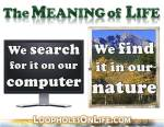 The meaning of life: we search for it on our computer, but we find it in our NATURE!